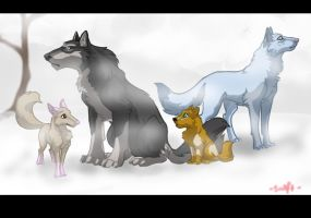 In Snow by swift-whippet