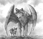winged wolf pencil drawing