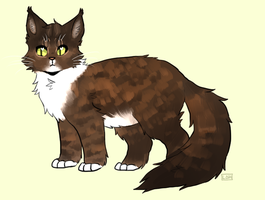 maine coon by lynxpurrs