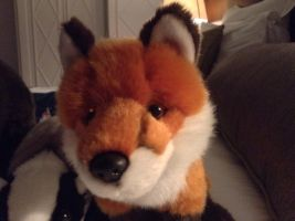 Fox plush by Goldielover1015