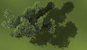 3D Tree by James-Fong