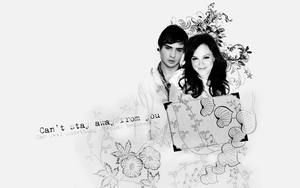 Wallpaper Blair and Chuck by numb22z