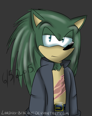 Sonic Element: Scourge Ryder by Lordius-Biscuit