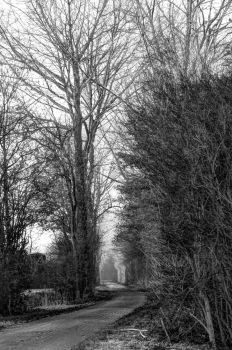 road to nowhere by clochartist-photo