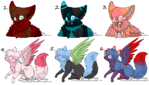 Chinkachu,Winged Canine Adopts 1 by Mewberry-Chan