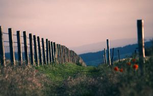 Over the hills by adamlack