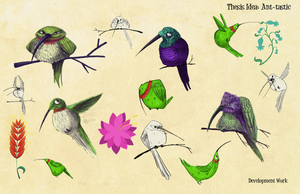Hummingbirds by adailey