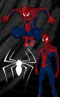 Spiderman by drayphly