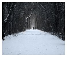 White Morning by manticor
