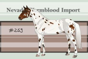 Nevada Warmblood 259 by BRls-love-is-MY-Live