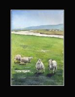 Easter watercolour from Shetlands by sanderus