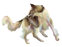 Borzoi named Filipp by ammy-o