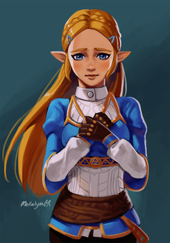 BotW: Zelda by Carcoiatto