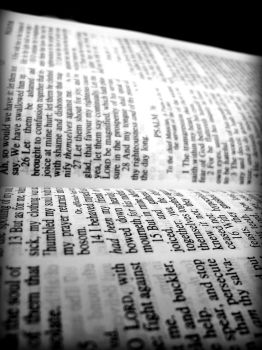 Bible by colombiarican96