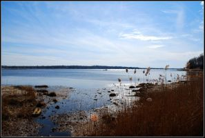 The Navesink River by SoCallMeNothing