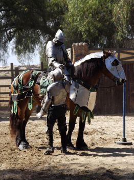 Two Knights Unrestricted Stock 003 by tursiart