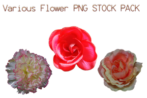 Various Flower PNG STOCK PACK by KarahRobinson-Art