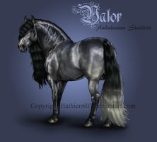 Valor Reference by Hathien603