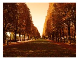 Park in Paris by SeiMissTake