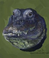 Gator Portrait by maugryph