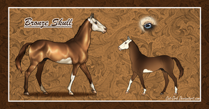 Bronze Skull by Cat-Orb-Stables