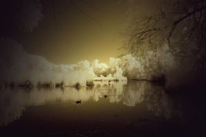 Duckpond - infrared by Midnight-Vanburen