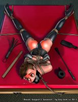 Bound, Gagged and Spanked by GagSnob
