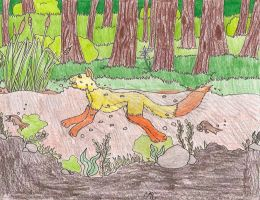 Kitty Swimming in a river .:request:. by Haggis53