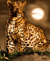 Leopard, Early CG Coloring by AlanStain