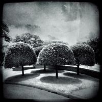 Strange Worlds Collide by intao