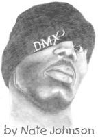 DMX by natenation
