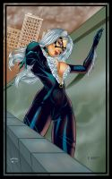 BlackCat by RichardHuante
