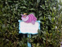 Cheshire Cat sign by JudytaDragon