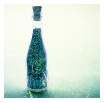 double exposure bottle-grass by yAs----