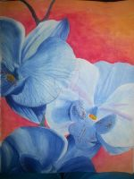 Blue Orchid by NehruKozue