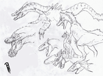 Wyvern Sketches by TheMacronian