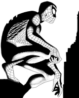 Spiderman by leaveit2deaver