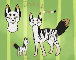 Drishti Reference Sheet by Kama-ItaeteXIII