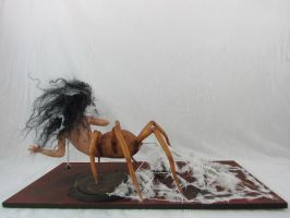 Recluse5 by MaryRopelatoArtDolls