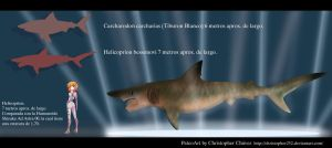 Helicoprion bessonovi by Christopher252