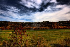 HDR Autumn Field by Nebey