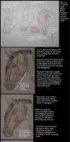 Colored Pencil Tutorial by forgottenones