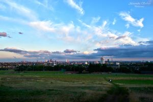 London overview from Hampstead Heat Park by LoveSexAndDrugs