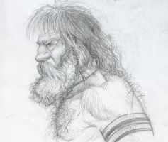 Viking Sketch by Wolverat