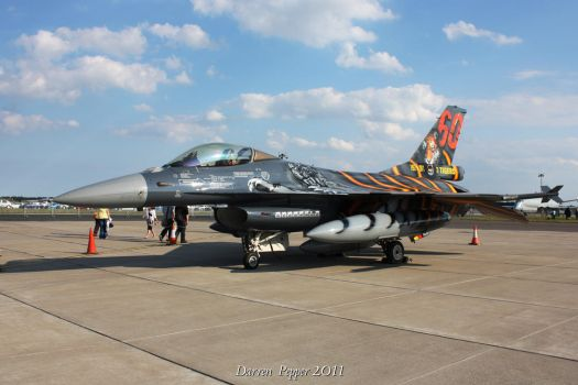 F-16 Tiger meet by DAZZY-P