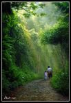 PULANG to home by hendradarma28