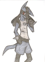 lucario by loopmaker