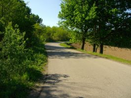 Road in the sunny day 1 by Norhi