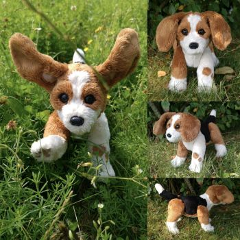 Meet Lucky, the energetic Beagle pup! by demiveemon