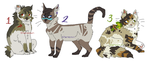 cat designs (OPEN -- READ RULES) by homeqrown